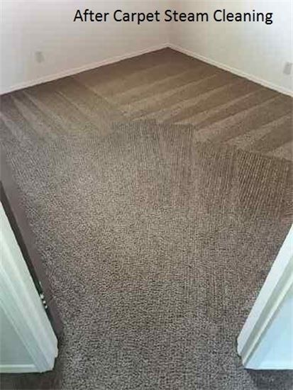 Carpet Cleaning Steamaway Carpet Cleaning